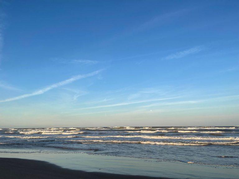 Priscilla - The Beach